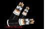 Dây cáp điện Cadisun, Cáp treo CXV 3x4+1x2,5